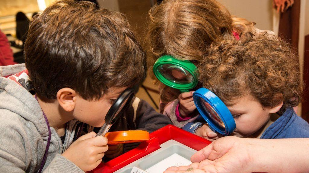 A educação científica baseada em jogos faz com que as crianças sejam ativas e críticas, diz PhD