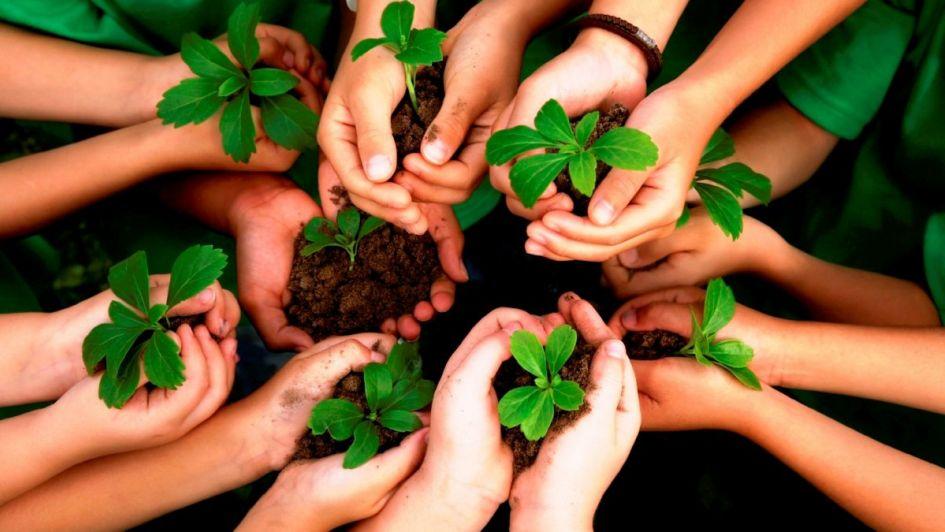Educação aumenta a conscientização e a preocupação com o meio ambiente